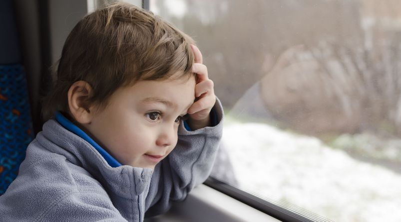 Child Custody Access and Support